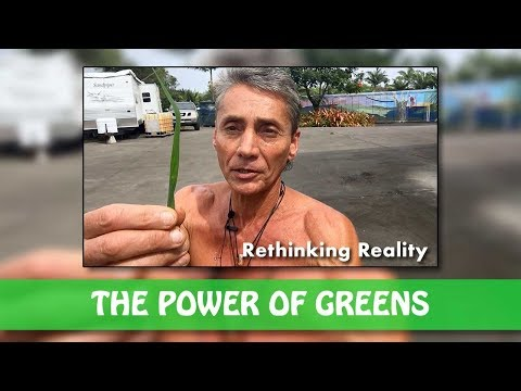 Rethinking Reality: The Power Of Greens | Dr. Robert Cassar