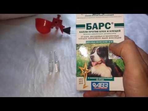 Барс, Дельцид, Инсекар препараты для дезинфекции  кур и птичника