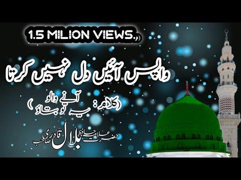 Wapis Ayen Dil Nahi Karta | Allama Hafiz Bilal Qadri | WhatsApp Status Naat