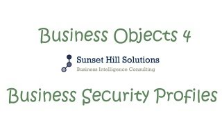 Business Objects 4x Information Design Tool - Business Security Profiles