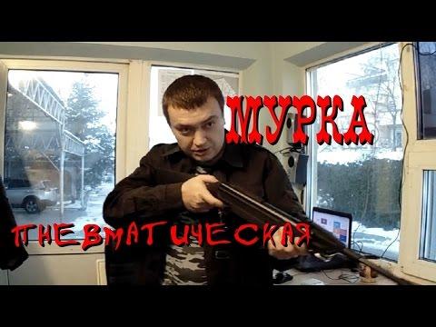 Пристрелка МР 512 Мурка на 25 м - YouTube