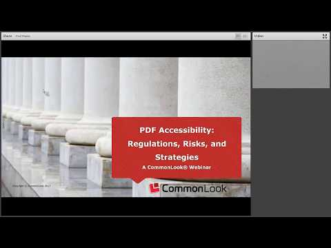 PDF Accessibility: Understanding Section 508,Reducing Risk, and Implementing Strategies
