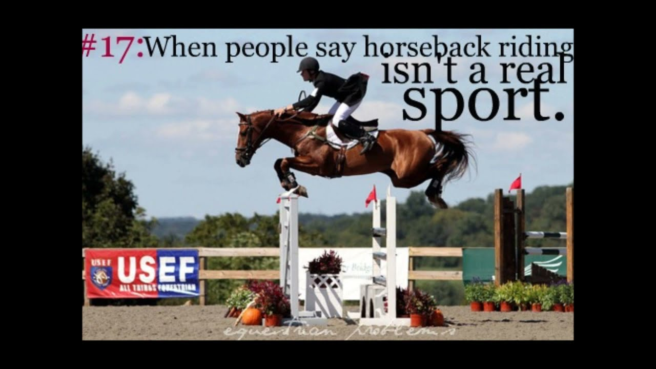 Equestrian Quotes Sayings And Problems Youtube