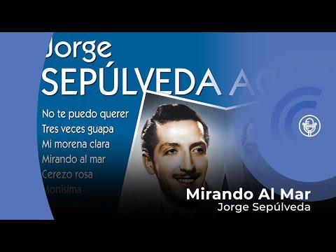 Jorge Sepúlveda - Mirando Al Mar (con letra (lyrics video)