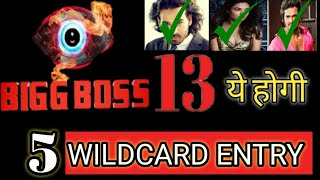 bigg-boss-13-5-new-wild-card-contestants-ly-confirmed-for-bigg-boss-13-colors-tv