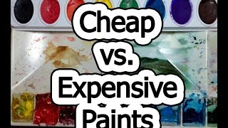 Cheap vs Expensive Paint