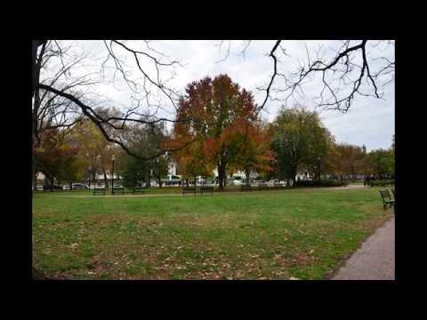 ABD'ye seyahat 1: Dünya politikasının başkenti Washington D.C.