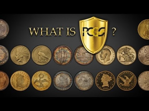 What is Professional Coin Grading Service?
