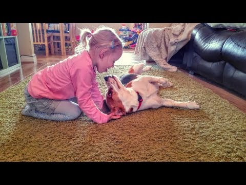 Why Children Should Have a Dog