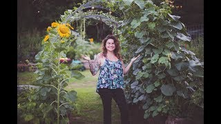 How to Build An Arched Trellis for 30 Dollars | Vertical Gardening