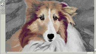 Sheltie Portrait in Microsoft® Paint