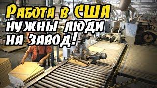видео Как найти хорошую работу людям за 50 — Российская газета