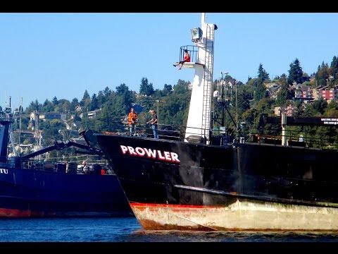 Salty Dog Boating News - F/V Prowler, Prowler Fisheries Longliner