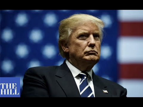 "GOP Senator touts efforts combat alleged ""fraud"" against Trump in 2020 election"