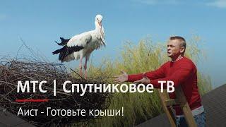 МТС | Спутниковое ТВ | Аист - Готовьте крыши!