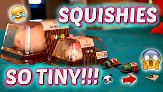 THE SMALLEST SQUISHY IN THE WORLD!!! ~ Mini Squishies | Sedona Fun Kids TV