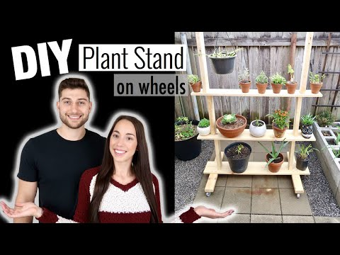 diy-plant-stand-*on-wheels*