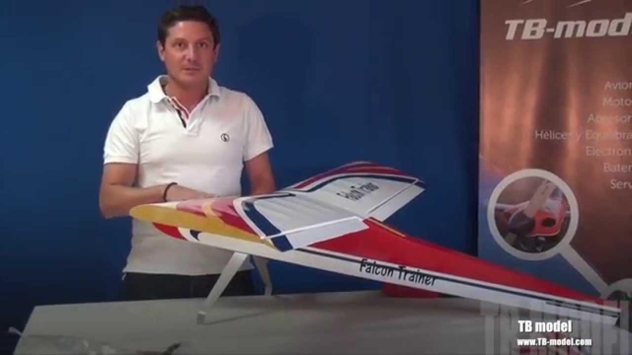Pilot Rc Edge 540V3 Hamilton 20cc and Extra 330sc electric