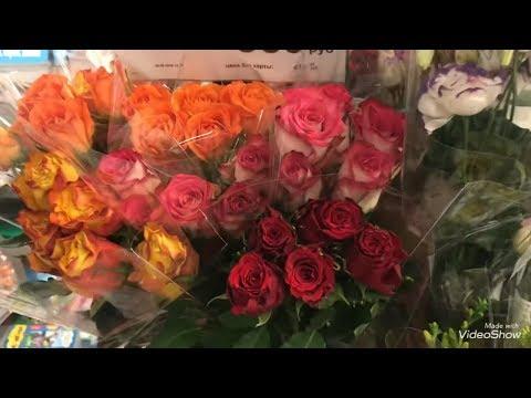 Цветы к 1 Сентября в Ленте.Орхидеи на уценке!