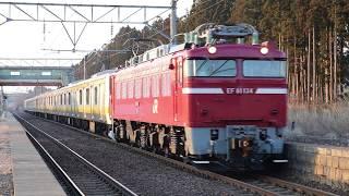 奥羽本線 EF81形+E231系 配9859レ 北金岡駅通過 2019年3月9日