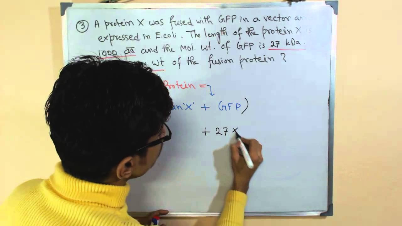 Molecular Weight Calculation Molecular Weight Formula Youtube