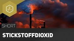 Stickstoffdioxid   Schadstoff aus dem Auto - #TheSimpleShort