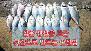 최강 생선 손질법/ 초간단 회뜨는법/ 회뜨기/ 신경절단…