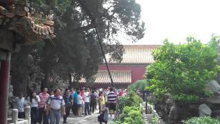Walking through the Imperial Garden in the Forbidden City 1/3