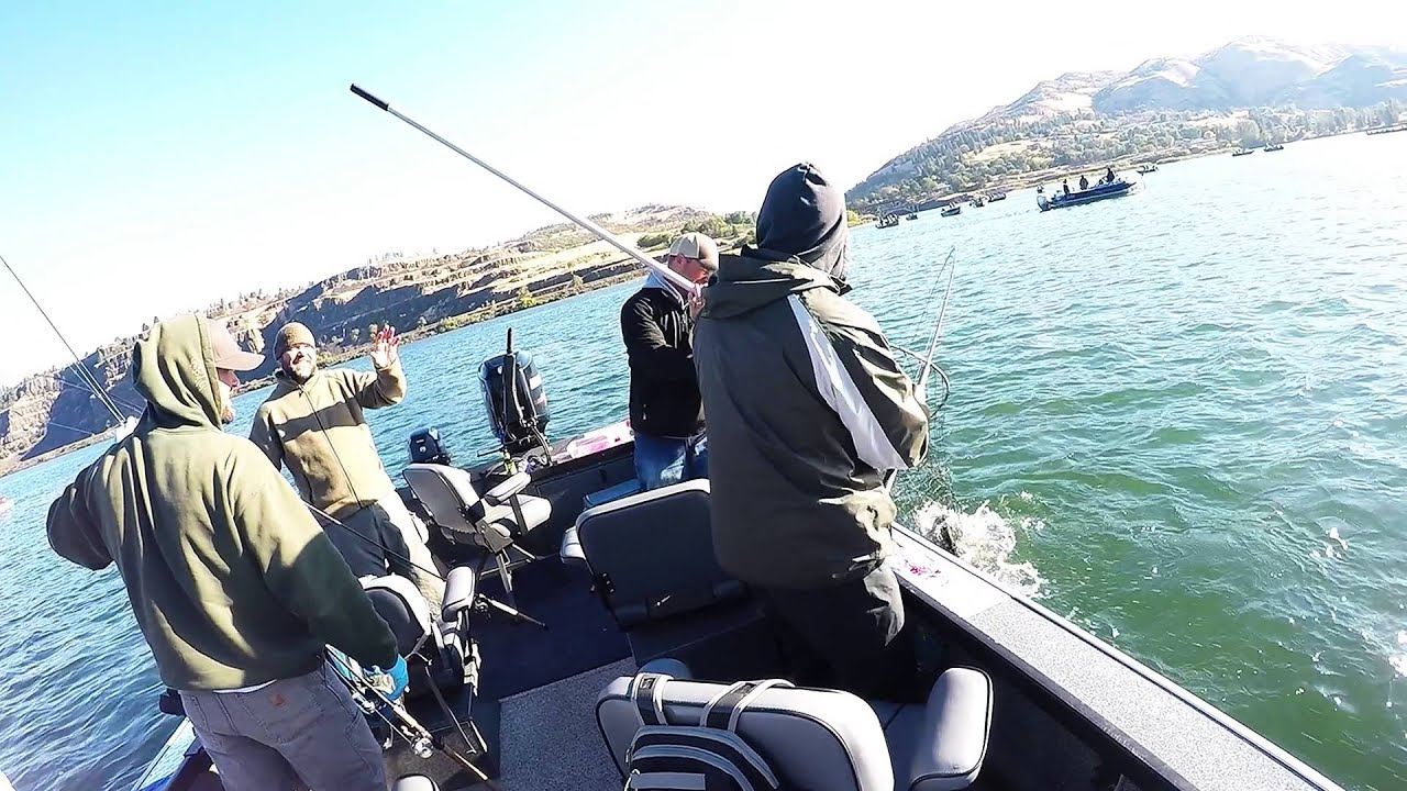 Columbia river chinook salmon fishing trip sept 2015 for Columbia river salmon fishing