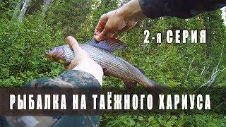 Ловля Хариуса / Обзор туристический коврик Splav «Airlight» / Серия 2-2