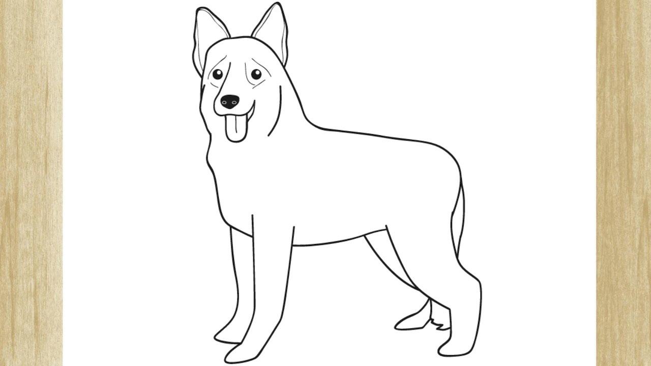Como Desenhar Um Cachorro Pastor Alemao Youtube