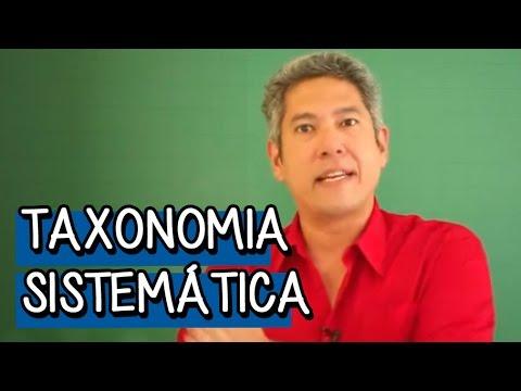 Introdução à Taxonomia - Resumo para o ENEM: Biologia | Descomplica