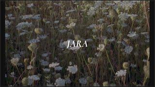 Fleet Foxes - Jara Lyrics // Subtitulado Español