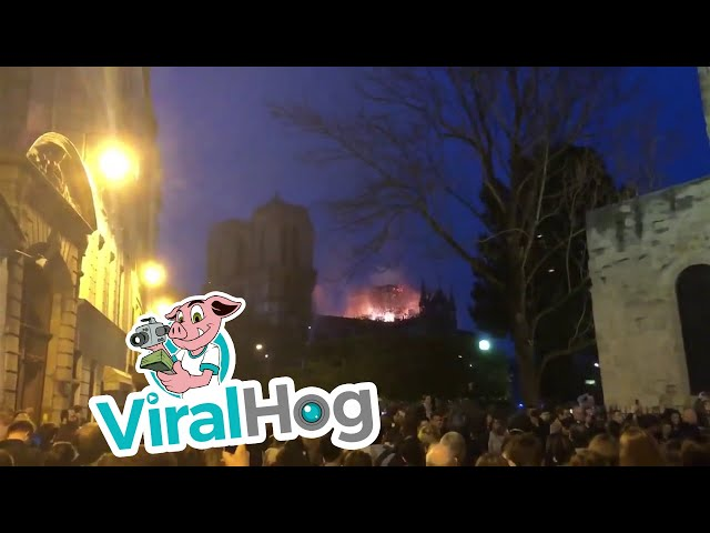 Crowd Sings Ave Maria as Notre Dame Burns || ViralHog