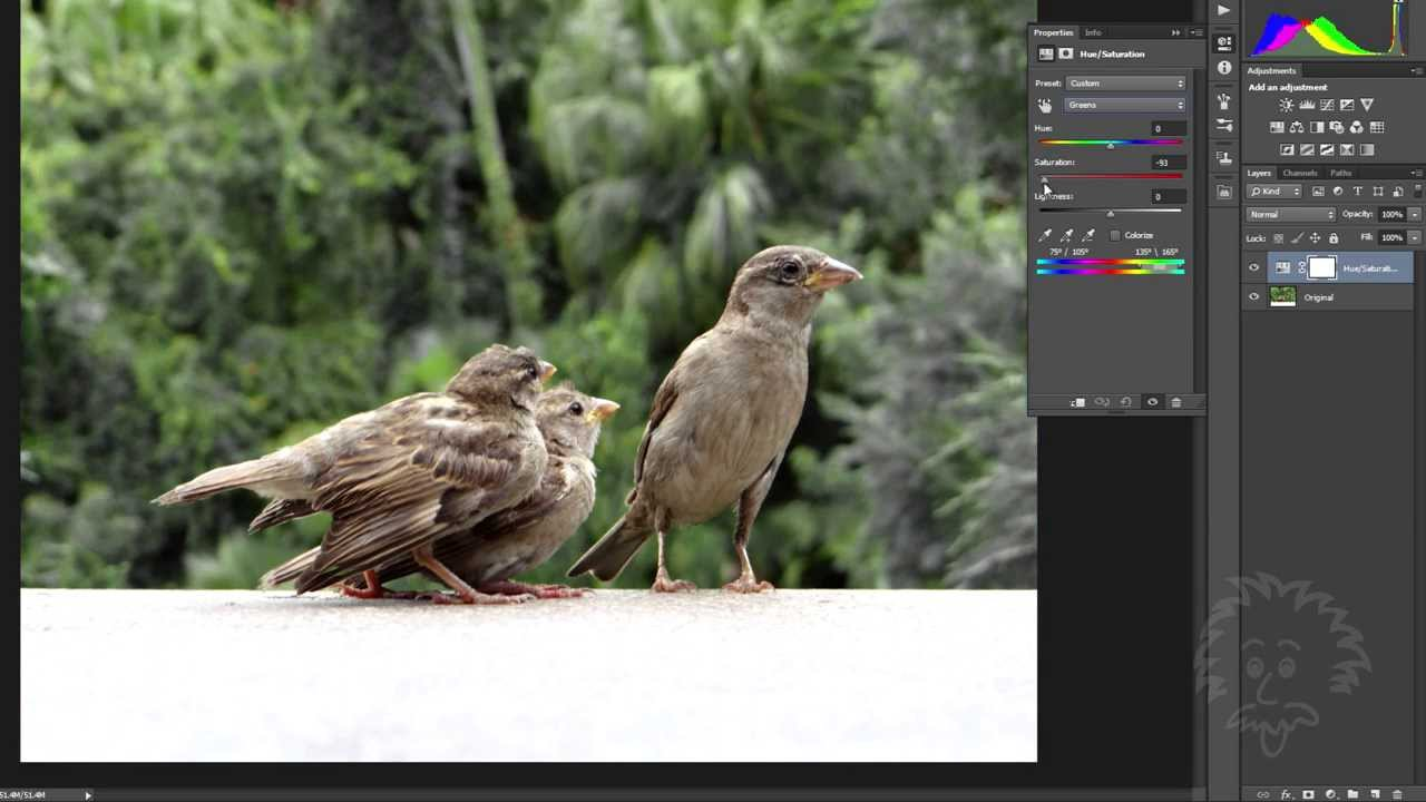Photoshop Tutorials – Partial Color Filtering and Quick Selection