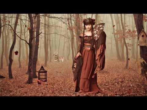 Beautiful Relaxing Japanese Instrumental Music - Becoming A Geisha (Memoirs Of A Geisha Soundtrack)