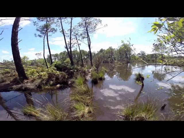 RAINBOW LAKE - Go Pro Swim Island
