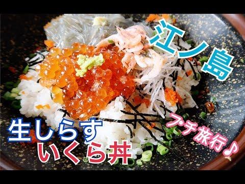 【女子旅】神奈川でエンジョイ!江ノ島・八景島シーパラダイスに行ってきたよ!