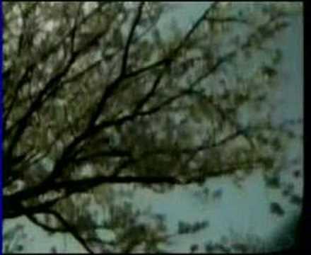 Lien Chi 1990 ( Kao sen mei )