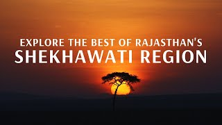 Explore The Best of Rajasthan's Shekhawati Region With Flamingo Transworld
