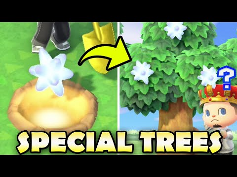 🌟🌳 What Can You Grow On SPECIAL TREES? | Animal Crossing New Horizons