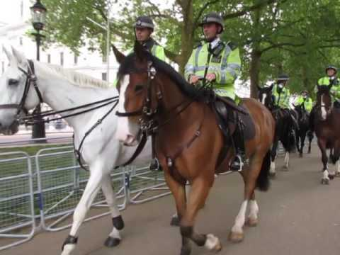A close encounter with the mounted police in St James Park London