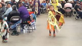STRONG SPIRITS POW WOW -  Tiny Tots Pow Wow