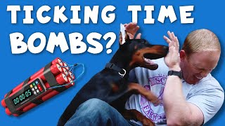 Why Do Dobermans Turn on Their Owners?