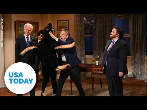 Martin Short's Doug Emhoff gets mauled by Biden's dog Major on 'SNL' | USA TODAY
