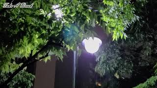 가로등 불 아래 듣기 좋은 우산 빗소리 ASMR 듣고 …