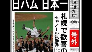 2006年 北海道日本ハムファイ...
