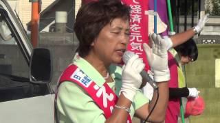 遠藤昭子参議院山梨選挙区候補、最終日の街頭演説 吉羽美華 検索動画 26