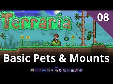 Basic Pets Mounts Lesson 08 Terraria Modding Master Class Youtube