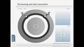 Vibration Analysis - Orbit Plots-Centerline Diagram - Mobius Institute